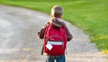 little boy with back pack pixabay